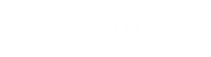 Tint Solutions white logo.